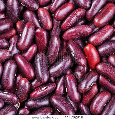 Raw Red Kidney Beans Close Up
