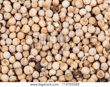 Many Dried White Pepper Peppercorns
