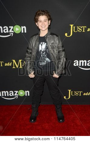 LOS ANGELES - JAN 14:  Jax Malcolm at the Just Add Magic Amazon Premiere Screening at the ArcLight Hollywood Theaters on January 14, 2016 in Los Angeles, CA