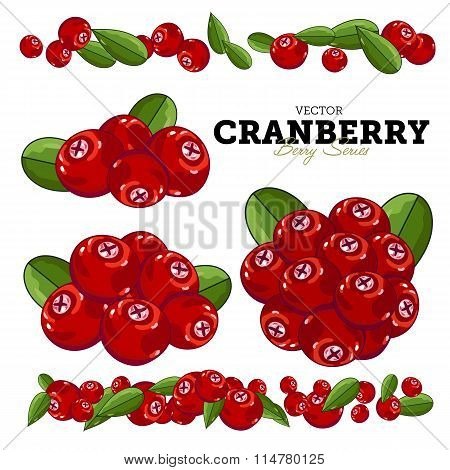 Cranberry Set, Vector.