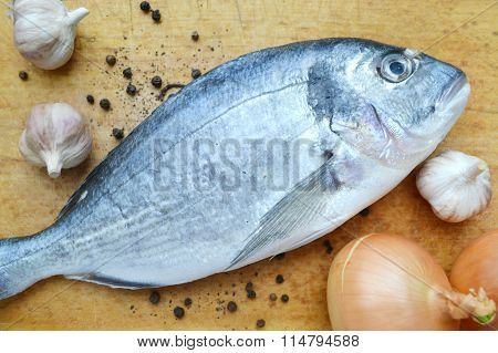 Uncooked fish dorado with garlic and onion