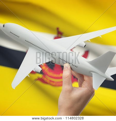 Airplane In Hand With Flag On Background - Brunei