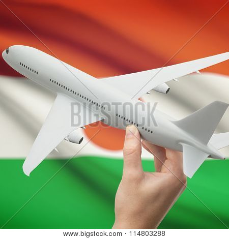 Airplane In Hand With Flag On Background - Niger