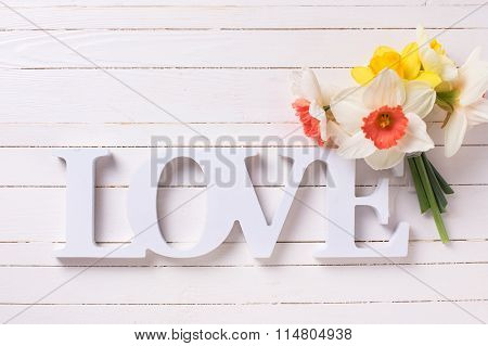 Fresh Yellow Narcissus Flowers And Word Love