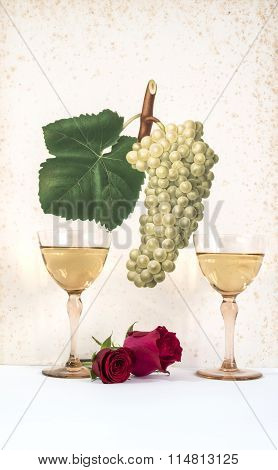 couple of glasses of white wine with pink background decorated with bunch of grapes