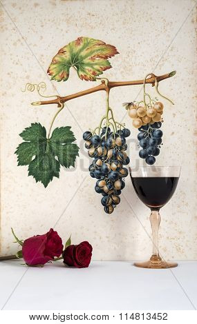 old glasses of red wine with pink background decorated with bunch of grapes