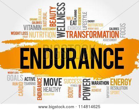 Endurance Word Cloud