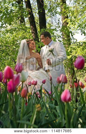 Wedding.happy Couple  In Park