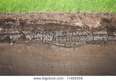 Cesped y varios Underground capas del suelo