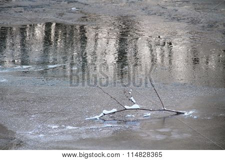 branch on the frozen river