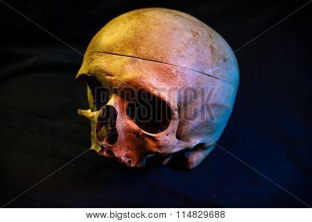 Human skull For tattoo on black background.Halloween background