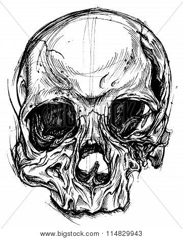Broken Skull Drawing line work