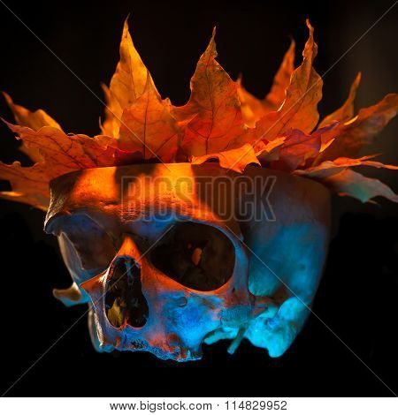 Sketch Tattoo. To Create Tattoos.a Human Skull With A Crown Of Leaves Tattoo On A Black Background.h