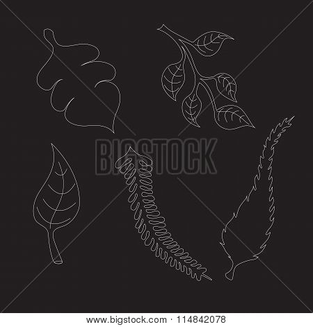 Set With Tree Leaves