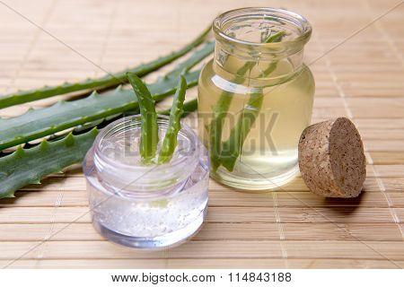 organic aloe vera for skin care and health