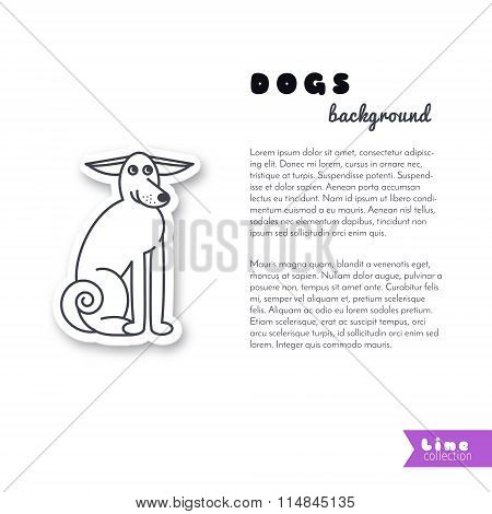 Adult dog background
