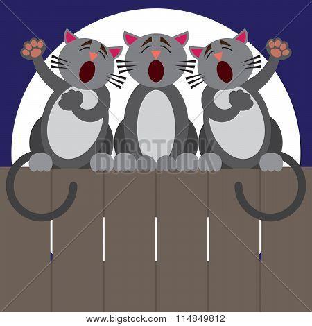 Cat Fence Trio