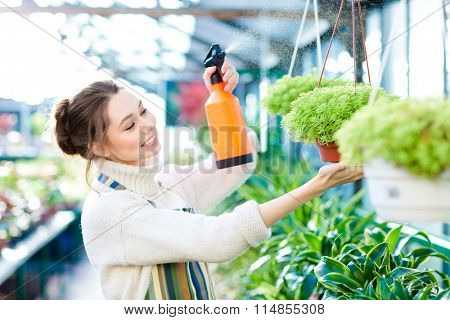 Pleased pretty young woman gardener spraying flowers and plants in greenhouse