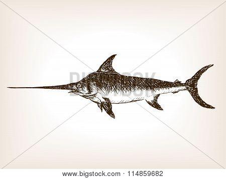 Swordfish hand drawn sketch vector