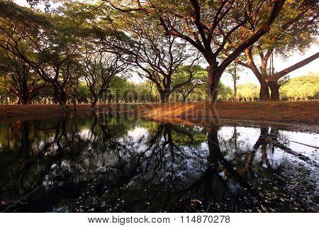 Asia Thailand Sukothai Landscape