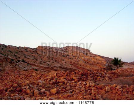 Oman Beach 2