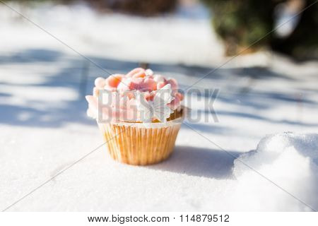 Outdoor Photo Of Cupcake Decorated With A Sugar Butterfly. Cupca