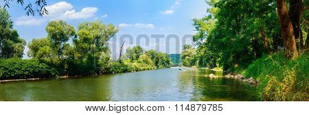 tree, water, nature, sun, spring, forest,