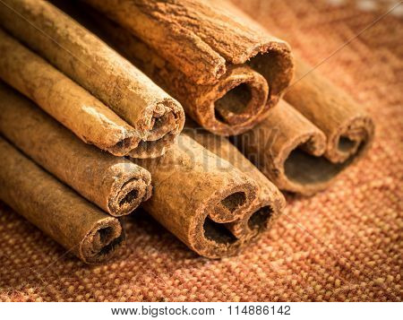 Group of Cinnamon Sticks