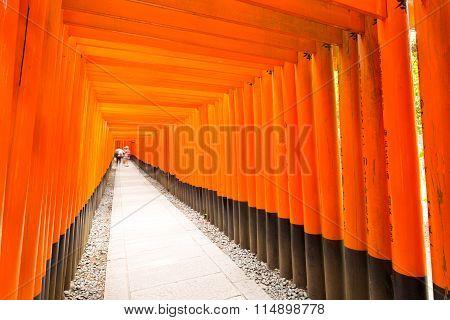 Fushimi Inari Shrine Angled People End Vanishing