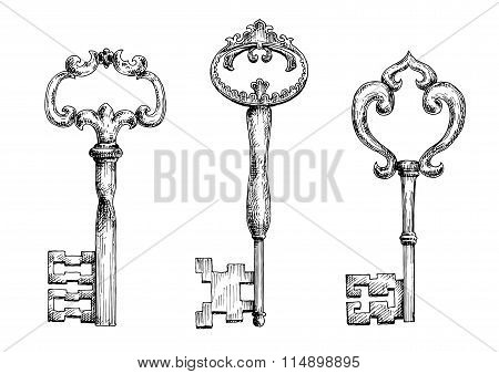 Vintage medieval skeleton keys sketches