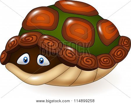 Cartoon funny turtle hides in its shell