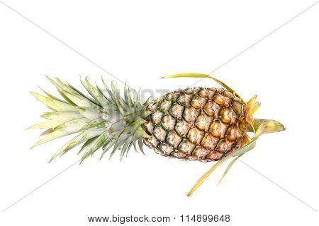 Fresh Whole Pineapple. Isolated On White Background.