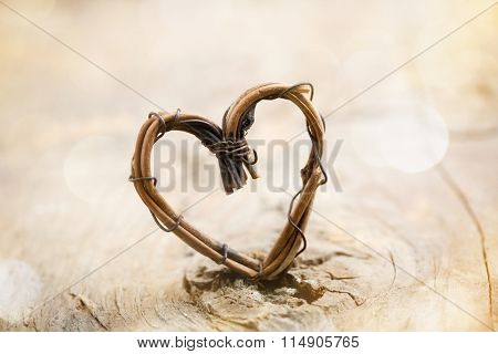 Willow heart with bokeh background