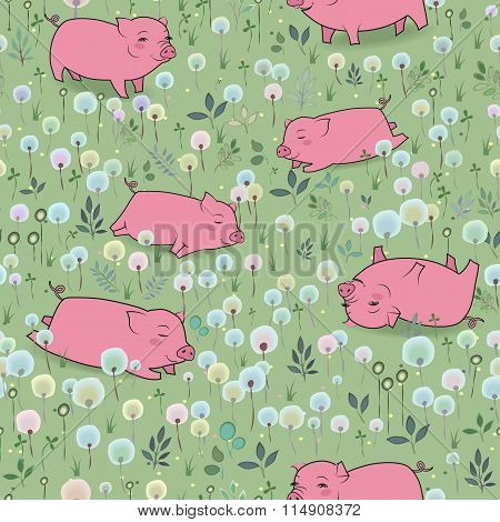 Happy Pigs On The Blossoming Field