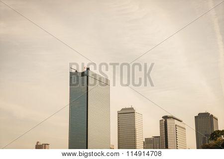 Tokyo, Japan cityscape ( Filtered image processed vintage effect. )