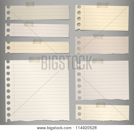 Pieces of torn brown lined note paper with adhesive tape