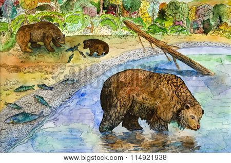 Bears on fishing