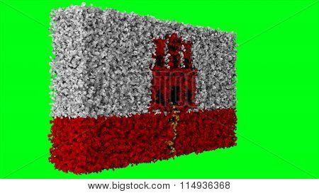 Flag of Gibraltar made from leaves