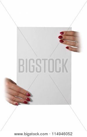 Woman's Hands Holding A Blank Sheet Of Paper