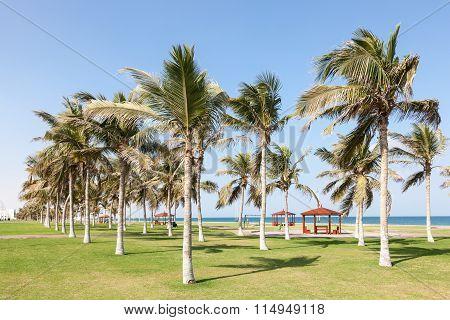 Park At The Corniche In Seeb, Oman
