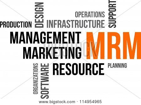 Word Cloud - Mrm