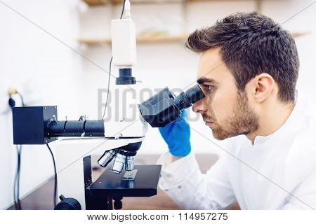 Medical Scientist With Microscope, Examining Samples And Liquid In Special Laboratory.