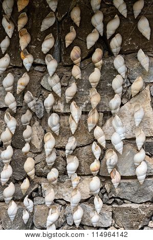 Decorating With Seashells Ocean