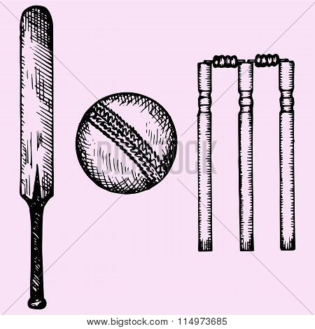 Set of equipment for cricket