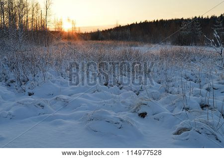 Red Frosty Sunrise In Winter Forest Under White Snow