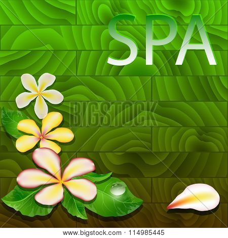 Vector illustration with exotic leaves, flowers  and drop.