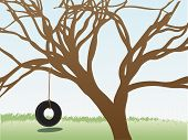 pic of tire swing  - Lonely empty tire swing hangs below branch filled tree editable vector illustration - JPG