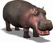 image of funny animals  - cartoon hippo looks funny and has fun himself - JPG