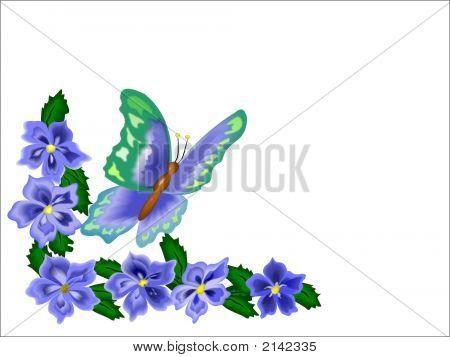 Butterfly Flower Border