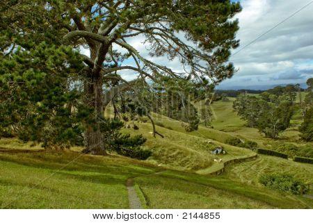 Hobbiton View